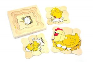 Chicken Life Cycle Layered Puzzle