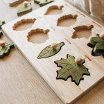 q toys montessori leaf puzzle